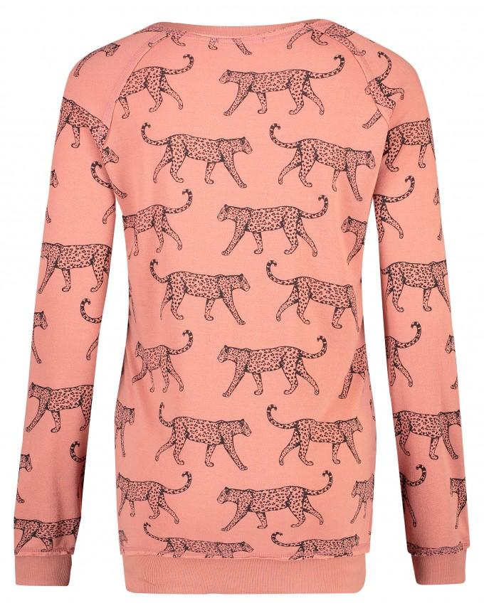 Pullover Graphic